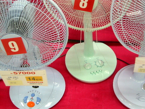 Beware of South Korean Fan Death!